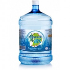 вода Оковский Лес 19л
